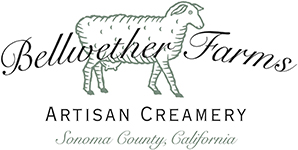 Bellwether Farms Artisan Creamery